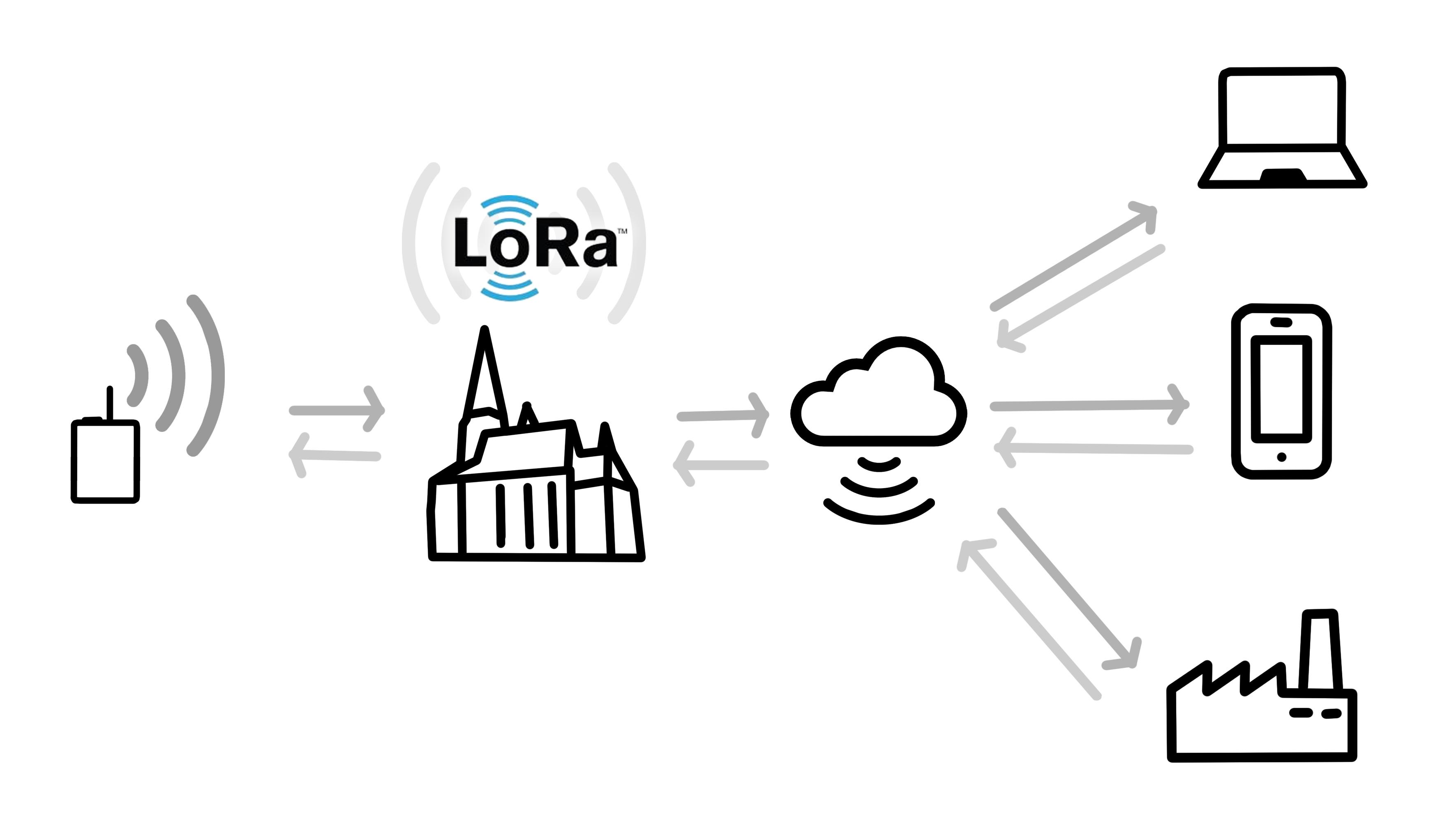 schema_lora